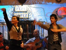 Flamenco (14)