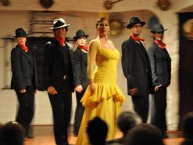 Flamenco (29)