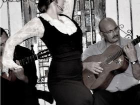 Flamenco (24)
