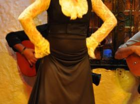Flamenco (30)