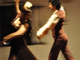 Flamenco (28)