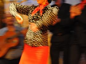 Flamenco (25)
