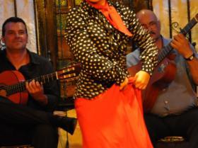 Flamenco (27)