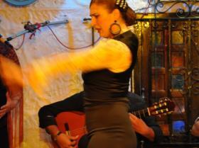 Flamenco (20)