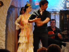 Flamenco (7)