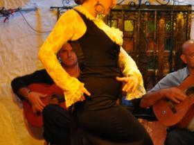 Flamenco (18)
