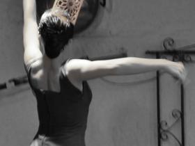 Flamenco (11)