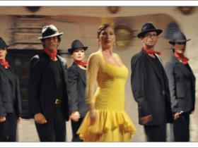 Flamenco (10)