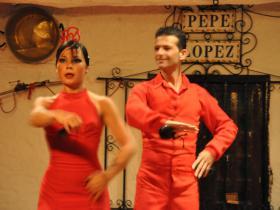 Flamenco (13)