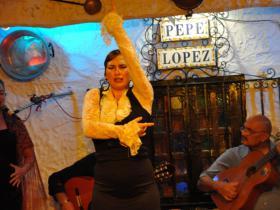 Flamenco (19)